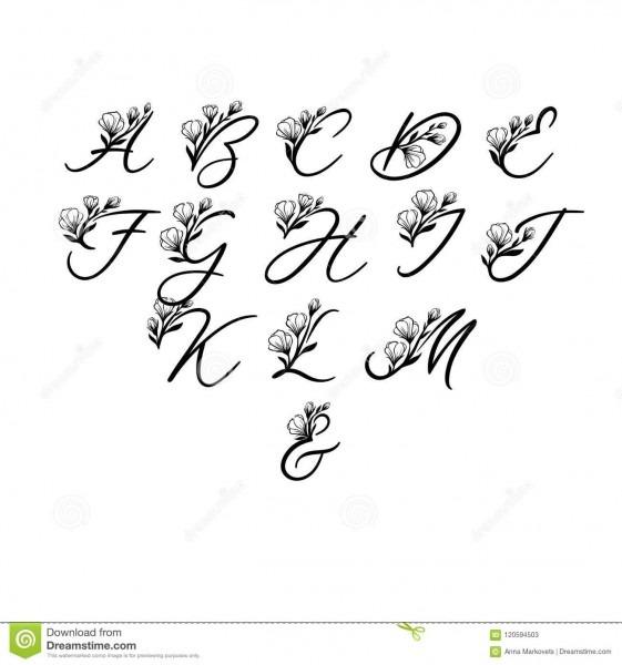 Alfabeto da caligrafia do vetor letras florais fonte escrita à mão