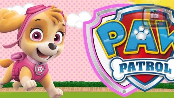 Convite virtual patrulha canina rosa 10 fotos