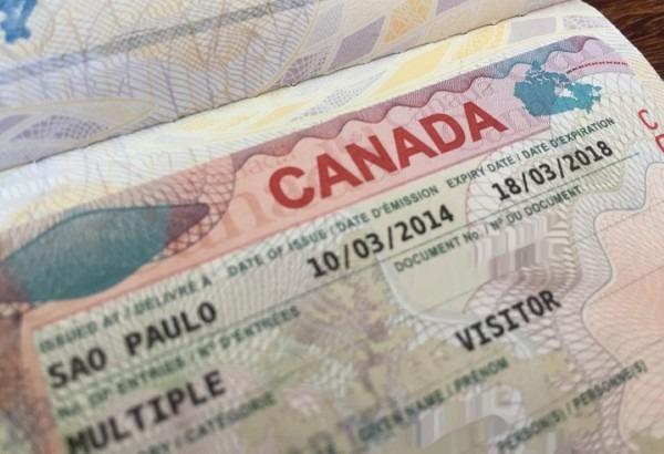 Documentos para um visto canadense  saiba o que é necessário!
